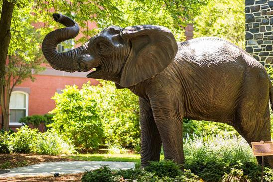 Jumbo the elephant in front of Barnum Hall