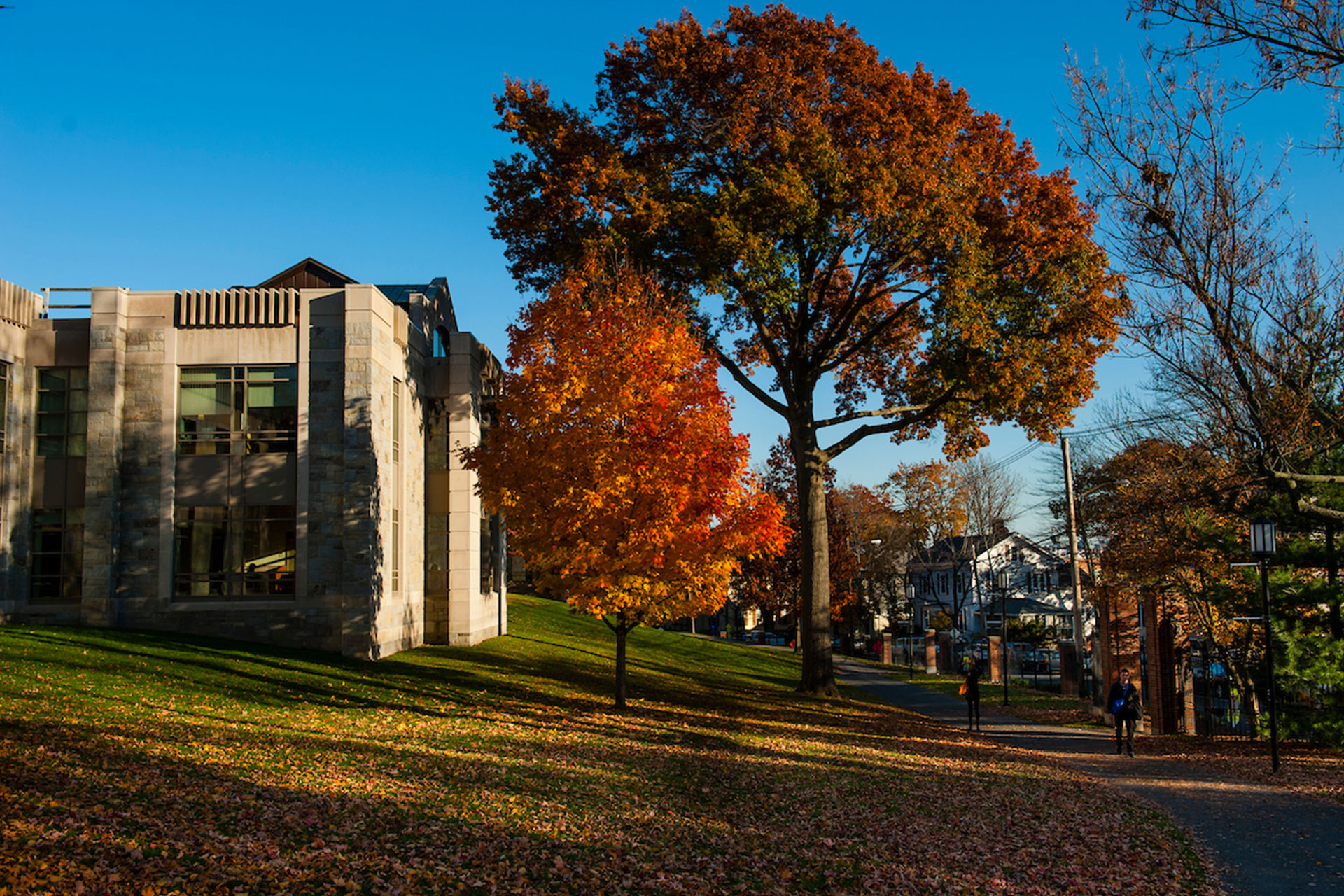 The Tufts campus in the fall
