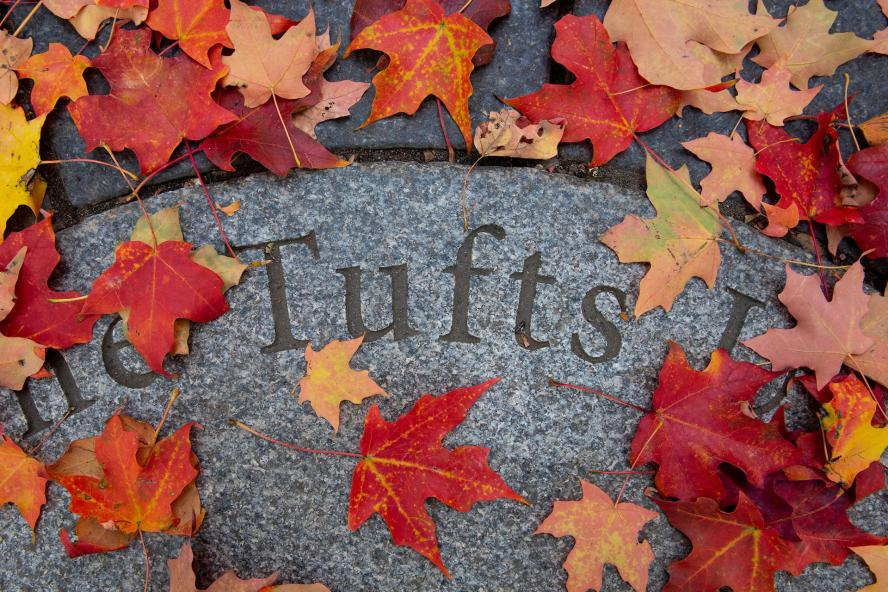 Tufts lettering surrounded by Fall leaves