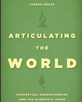 Articulating the World: Conceptual Understanding and the Scientific Image